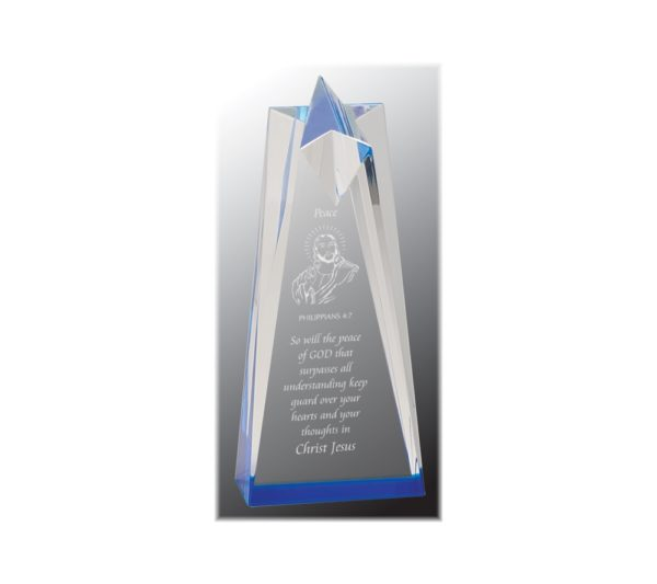 Sculpted acrylic star shaped award with blue highlights.