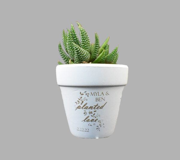 Custom Engraved White Clay Pot Wedding Favor Planted In Love